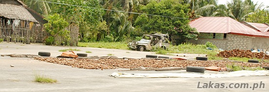 Copra drying in the middle of the road in Guiuan, Eastern Samar