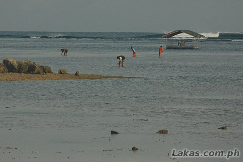 Life in front of the resort during lowtide