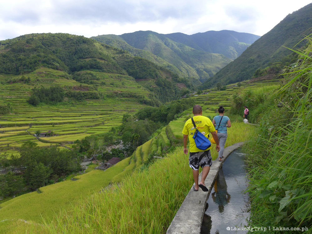 Walking in Hapao Rice Terraces in Hungduan, Ifugao, Philippines