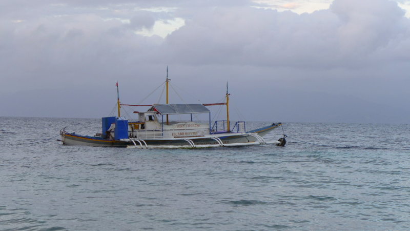 Boat rental for Island Hopping and Dolphin Watching