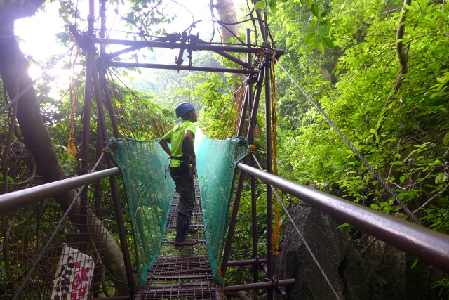 Canopy Walk in El Nido, Palawan, Philippines