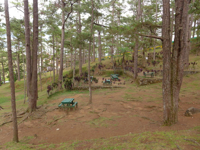 The Forest Lodge surroundings, Camp John Hay, Baguio City